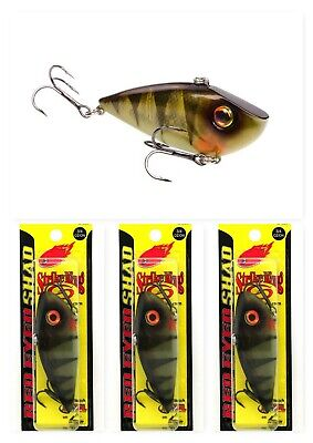 """H2O XPRESS COASTAL ELECTRIC CHICKEN HOLOGRAPHIC RATTLIN /""""T/"""" LIPLESS CRANK BAIT"""