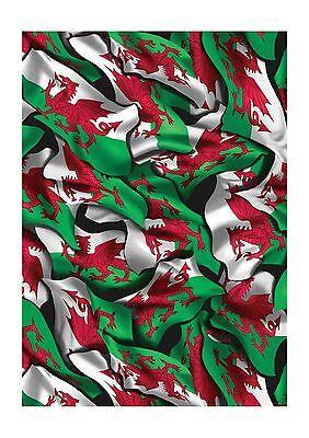 Welsh Flag Hydrographics Film 5 meter Roll - 100cm wide Activator Film