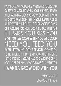 Adam Sandler - Grow Old With You Lyrics | MetroLyrics
