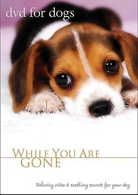 DVD FOR DOGS, Pet Music, Dog VIDEO FOR DOGS, Dog DVD - NEW UNOPENED
