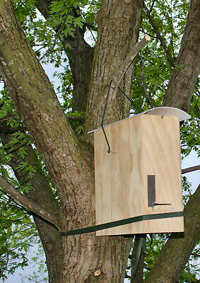 Honeybee Swarm Trap- Bee Hive- The Bees Kneeds