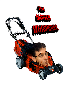 THE MOWER WHISPERER LAWN MOWER REPAIRS AND SERVICING Eagleby Logan Area Preview