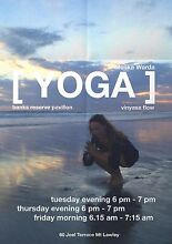 YOGA CLASSES ALL LEVELS WELCOME North Perth Vincent Area Preview