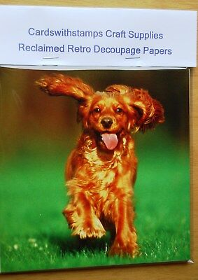 Dog Themed 25 Different Sheets Reclaimed Decoupage Craft Papers For Card Making