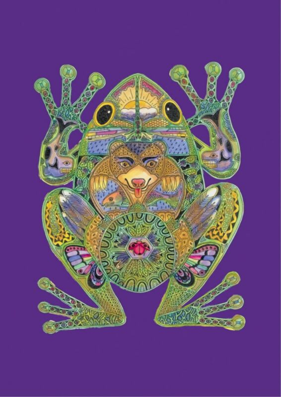 NEW LARGE TOLAND FLAG TOTEM  ANIMAL SPIRITS FROG BEAUTIFUL 28 x 40  MADE IN USA
