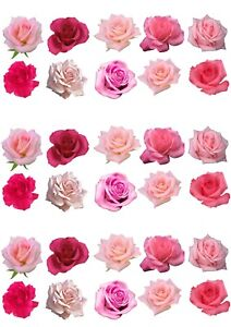 A4 Decor icing Sheet printed 30 Beautiful Pink Roses Flowers Edible Cake Toppers