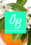 orangeblossomoutlet