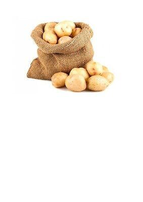1 Sacco da 5 KG di Patate Silane da pasto