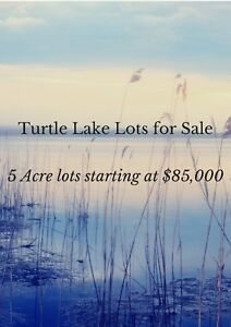 Turtle Lake lot for sale
