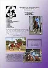 Young Horse Starting & Pre-Starting Clinic Lockyer Valley July Mount Whitestone Lockyer Valley Preview