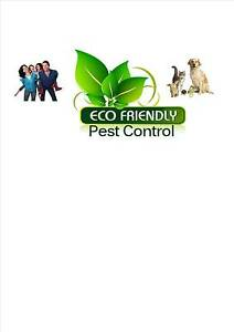 Alternative Pest Management and Inspections Maroochydore Maroochydore Area Preview