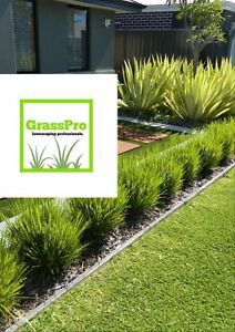 GrassPro -grass cutting and trimming, lawn services.