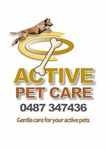 ACTIVE PET CARE Marrara Darwin City Preview