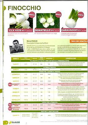 clause sementi finocchio tiziano f1 gg110/120 molto tondo conf.5000 pillole