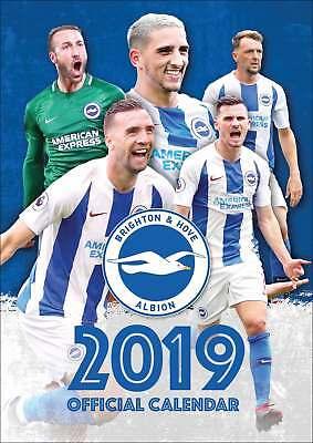 Brighton and Hove Albion FC A3 Calendar 2019