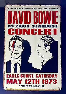 DAVID BOWIE as Ziggy Stardust Concert Poster Vintage Small Metal Sign 20x30 Cm