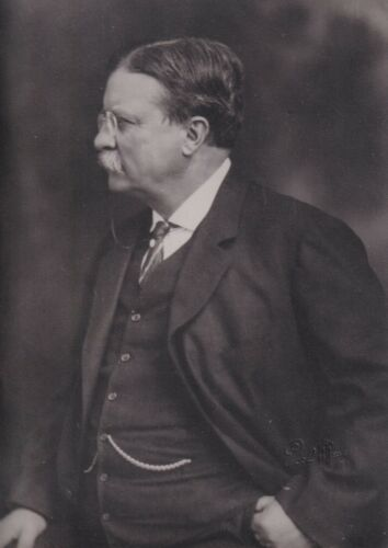 THEODORE ROOSEVELT  President original Pach Brothers photograph blind stamped