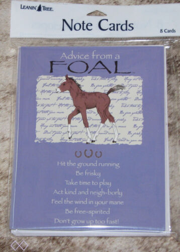LEANIN TREE Advice from a Foal #35552 ~ 8 Notecards ~ Don