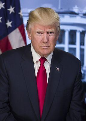 President Donald Trump Official PHOTO Portrait Art Print Photograph WHITE HOUSE