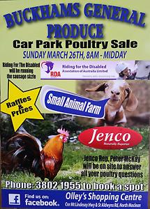 Buckhams poultry market North Maclean Logan Area Preview
