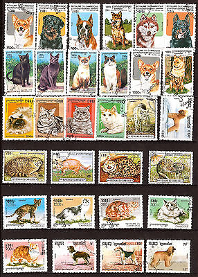 CAMBODIA All the breeds of cats and Chiens C195