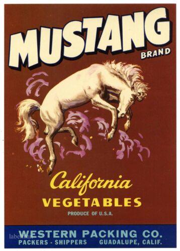MUSTANG Brand Vintage, Horse *AN ORIGINAL VEGETABLE CRATE LABEL* L33, brown
