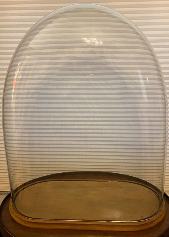 """Vintage Glass Clock Dome Very Large W/Base Taxidermy Doll Collectibles 25"""" Tall"""