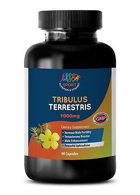 TRIBULUS TERRESTRIS Extract 1000mg Sport Edition Testosterone Boost (1Bot 90Ct)