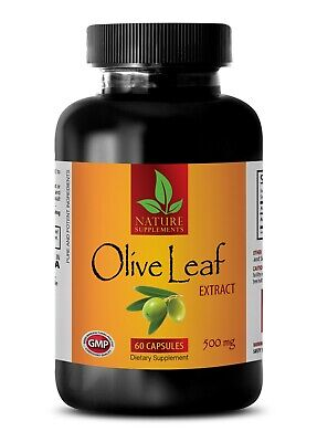 Best antioxidant - NATURAL OLIVE LEAF 500MG - Olive leaf extract capsules
