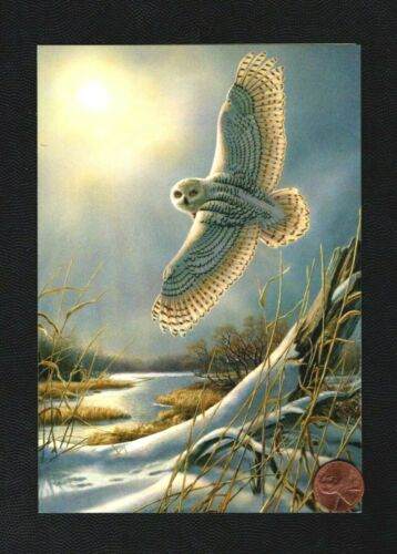 Christmas Owl  Flying Moon Stream Snow Tree Trunk - Greeting Card W/ TRACKING
