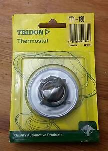 Thermostat (TT1-180) Tuggerah Wyong Area Preview