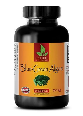 Organic BLUE GREEN ALGAE 500mg - Beta-carotene - Best Antioxidant - (Best Blue Green Algae)