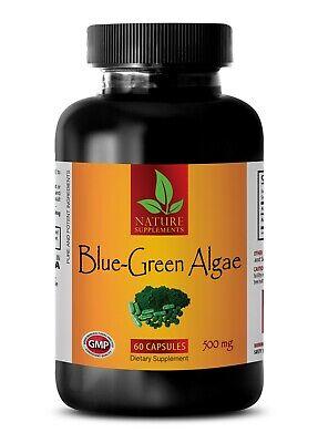 BLUE GREEN ALGAE 500mg - Stem Cell Activator - Best Antioxidant - (Best Blue Green Algae)