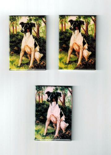 New Rat Terrier Pet Dog Magnet Set 3 Magnets By Ruth Maystead MFR # RAT-1