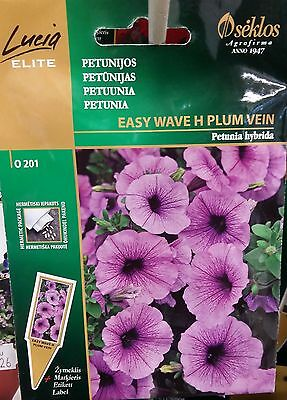 Patio Hybrid (Petunia Easy Wave Hybrid Plum Vein Spreading Formula Basket Pot Patio Balcony)