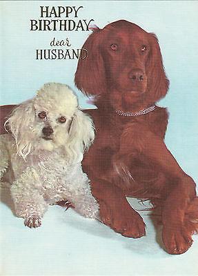Happy Birthday Husband Vintage 1970s Poodle Dog Greeting Card & Irish Setter