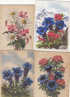 Ansichtskarten,Motive,Pflanzen,Blumen,Enzian,Sammlung,HS Künstlerkarten