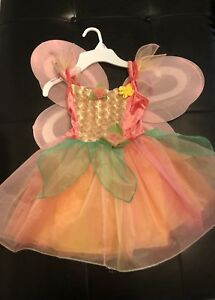 Cute Fairy or princess costume with wings