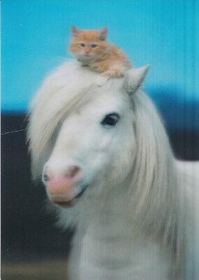 3 -D - Ansichtskarte:Pony und Kätzchen - Pony and Kitty - pony et chaton