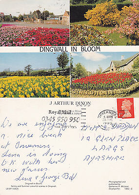 1995 DINGWALL IN BLOOM ROSS SHIRE SCOTLAND COLOUR POSTCARD