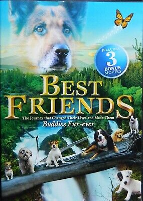 4 Family Movies BEST FRIENDS DERBY STALLION LITTLE UNICORN PETS to the