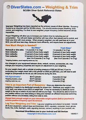 Divers Slate (Weighting & Trim Dive Slate - - Critical Scuba Equipment for All)