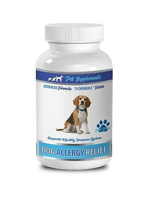 dog itching skin relief supplements - DOG ALLERGY RELIEF - quercetin for dogs