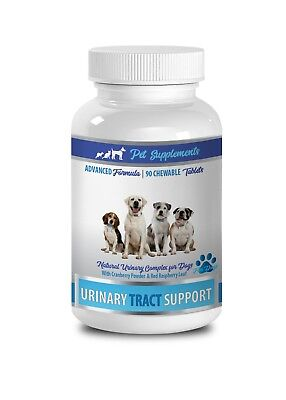 dog urinary care - URINARY TRACT SUPPORT FOR DOGS - cranberry for dogs uti