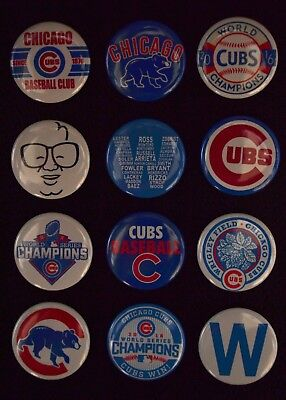 Chicago Cubs World Series Champs - 1