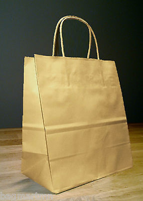 10x5x13 Kraft Brown Paper Debbie Retail Shopping Gift Bags with Rope Handles - Brown Paper Bags With Handles