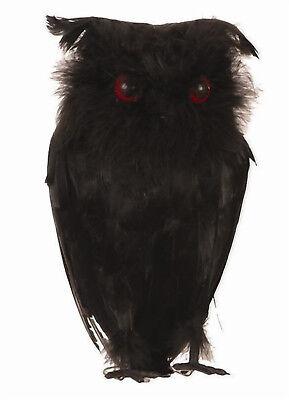 schwarze Eule 28 cm echte Federn Halloween Vogel schwarz Deko Hexe Requisite