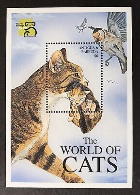 ANTIGUA CAT STAMPS S/S 1999 MNH WORLD OF CATS DOMESTIC MOTHER & KITTEN OWL BIRD for sale  Shipping to India