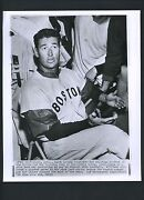 Ted Williams Wire Photo
