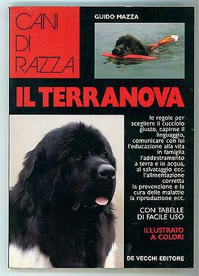 MAZZA GUIDO IL TERRANOVA DE VECCHI 1993 CANI DI RAZZA CINOFILIA ALLEVAMENTO